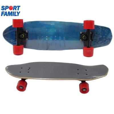 Penny board skateboard